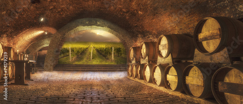 Fotobehang Industrial geb. wine cellar