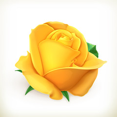 Rose flower, vector illustration