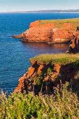 Island Cliffs