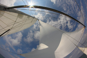 background for travel - sails full of wind