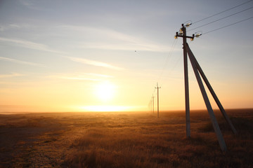 power lines at dawn in the mist