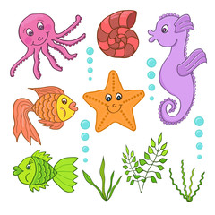 Illustration of the sea creatures