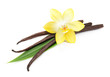 canvas print picture - Vanilla pods and flower isolated
