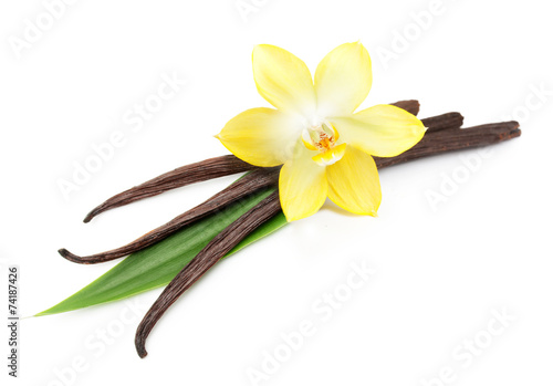 Fotobehang Aromatische Vanilla pods and flower isolated