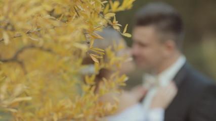 Beautiful pair of newlyweds near a bright yellow tree