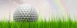 canvas print picture - White golf ball in grass and sky banner