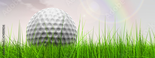 canvas print picture White golf ball in grass and sky banner