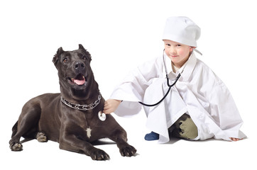 Little  vet listens to a stethoscope dog