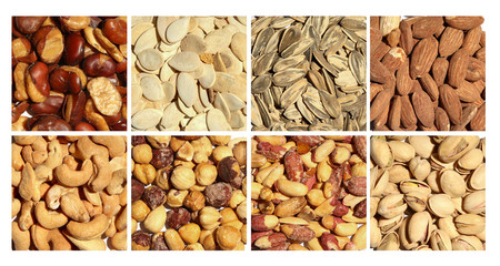 Grid of various Nuts