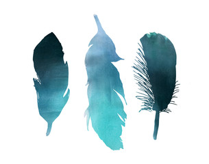 Blue turquoise watercolor bird feather