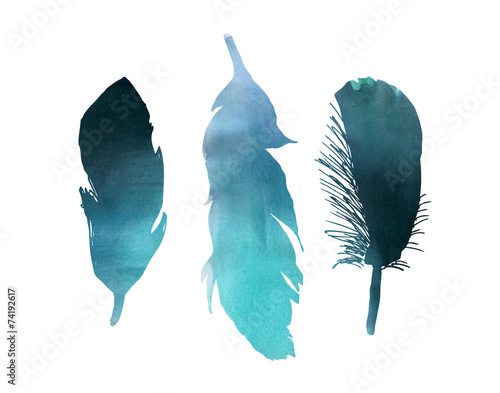 Deurstickers Vogel Blue turquoise watercolor bird feather