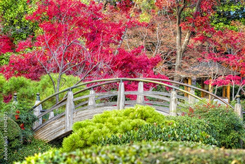 Fototapeta Moon Bridge in the Japanese Gardens