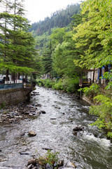 Borjomi River. Republic of Georgia
