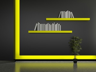 Modern home interior with book shelves