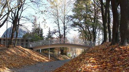 arch bridge in a city park