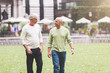 Gay Couple at Park in New York - 74206258