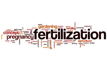 Fertilization word cloud