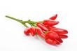 peperoncini rossi su fondo bianco