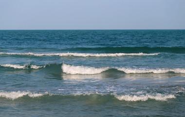 many sea waves