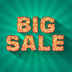 vintage text big sale with fire texture on green background conc