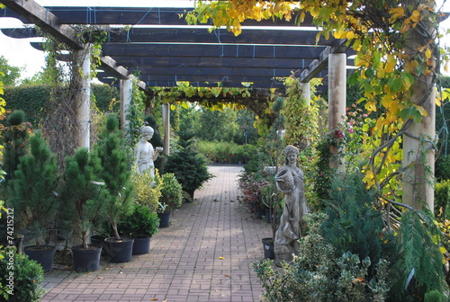 letni ogród - 74215212