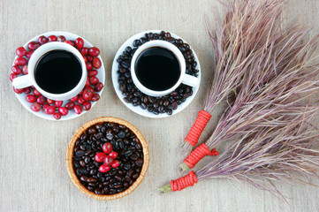 Harmony creative, coffee bean, cup of cafe,  ripe berries