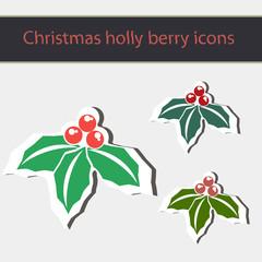 Christmas holly berry symbol.