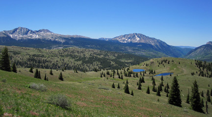 Colorado Trail near Little Molas Lake - Grass and Peaks