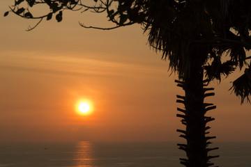 Sihouette Sunset