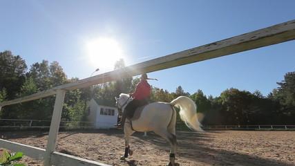 Woman trains horse