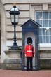 British Royal guards guard the entrance to Buckingham Palace - 74222240