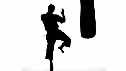 Silhouette karate man practicing on the sandbag on white