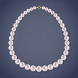 Round Pearls Necklace on dark background. - 74226000
