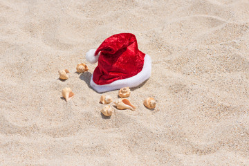 Santa hat and conch shells on the sandy beach