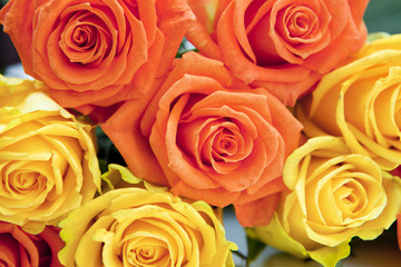 bouquet de roses jaune et orange