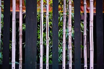 竹と木の垣根