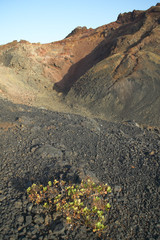 Volcanic landscape in La Palma. Canary Islands. Spain