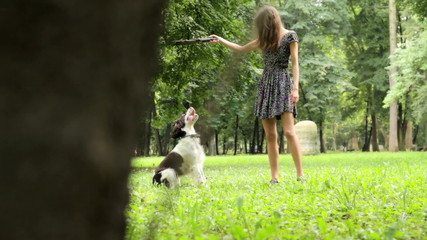 Young Girl Playing In Park With Funny Dog
