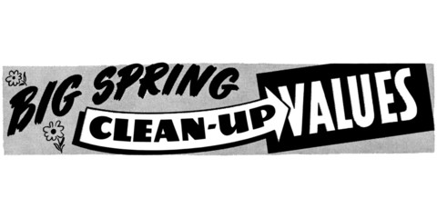 Big Spring Clean Up Values