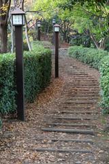 緑道No.3