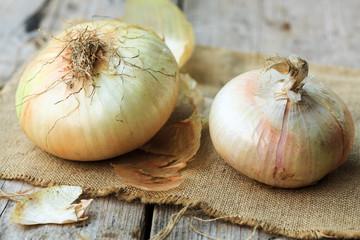 Onion from Giarratana, Sicily