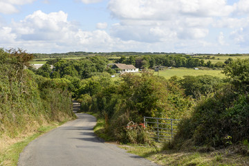 small country road between hedges, Cornwall
