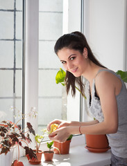 Smiling girl dusts window plants
