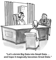 """Let's shrink Big Data into Small Data... Great Data."""