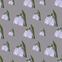 seamless snowdrop pattern. vector illustartion