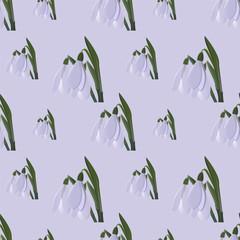 snowdrop seamless. vector illustartion