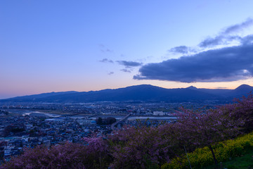 Landscape in the twilight at Seisho region, Kanagawa, Japan
