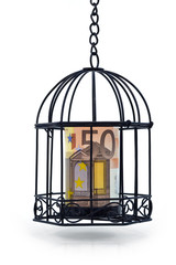 EURO UNDER RESTRICTIONS 2-A 50 euro note got kept in a cage.