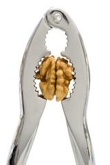 HEADACHE 2 - A nutcracker pressing the kernel of a walnut.
