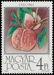Stamp printed by Hungary shows Peaches